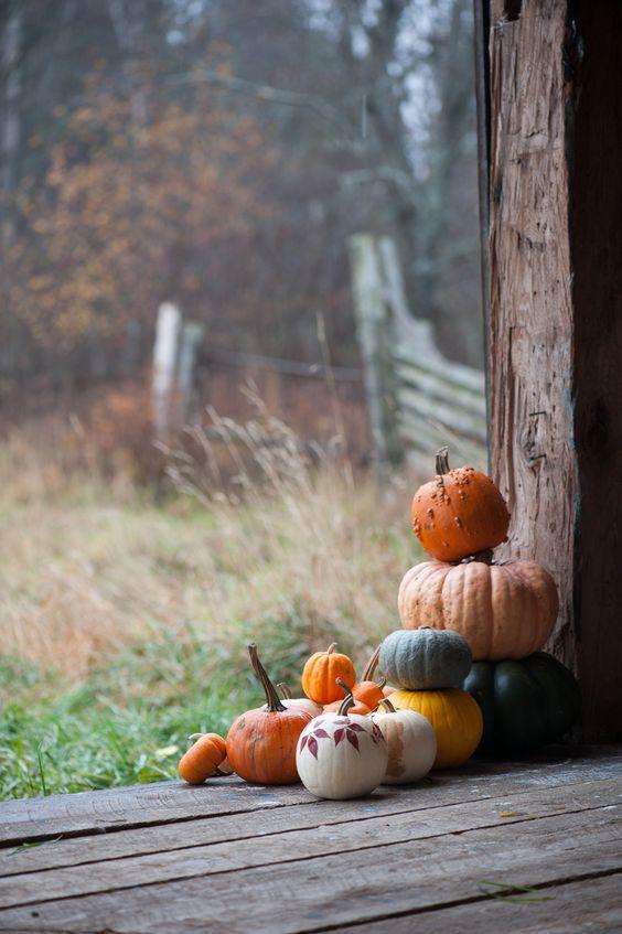 Un extérieur pour Halloween par The marion house book